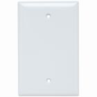 Blank Plate White Thermoset Blank, Box Mounted