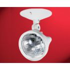 Emergency Remote Head, 12 V, 9 W, Plastic, White, Surface Wall/Ceiling Mount